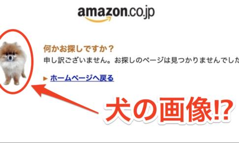 amazonプライムデーにアクセスできない問題で出てくる「犬の画像」とは?